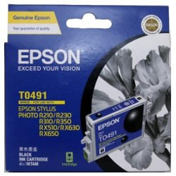 Epson T0491 Black (Genuine)