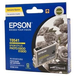 Epson T0541 Photo Black (Genuine)