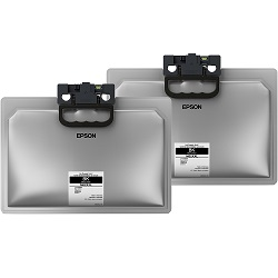 Epson M02XXL 2 Pack Bundle (C13T958192) (Genuine)
